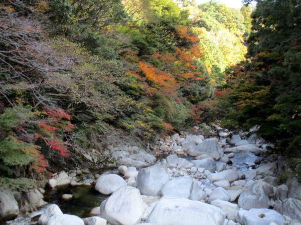 紅葉の湯の山温泉、アクアイグニスへ_d0145934_20181286.jpg