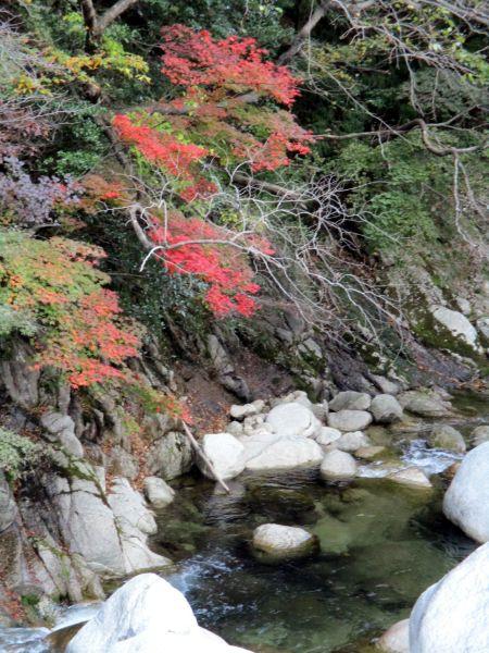 紅葉の湯の山温泉、アクアイグニスへ_d0145934_20183460.jpg