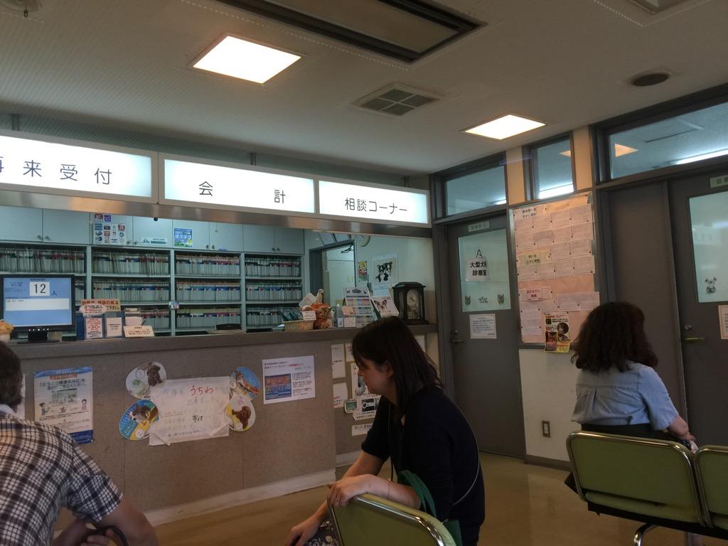 高橋動物病院_f0209434_1164146.jpg