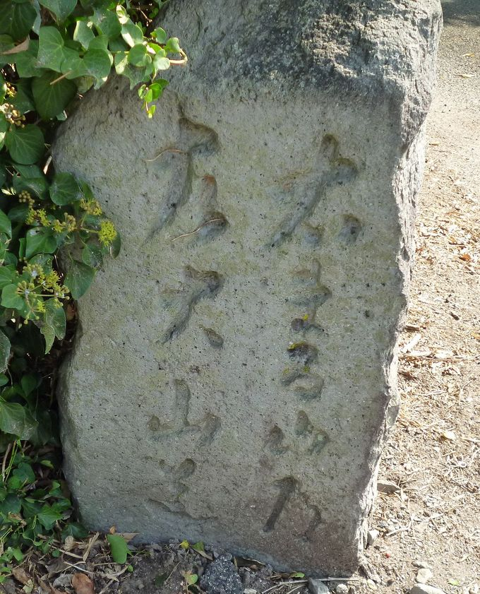 大山道を歩く(尾高道)_b0156456_1871667.jpg