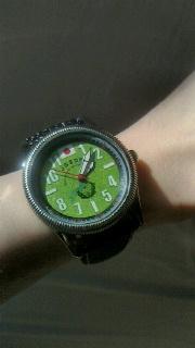 管理人の腕時計「自衛隊正式エンブレム採用・陸上自衛隊バージョン」_f0168392_21283654.jpg