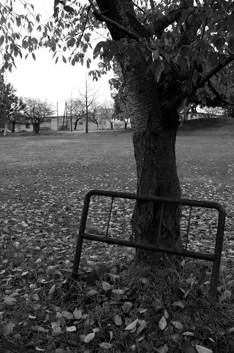 秋もそろそろ終わりかな・・・_e0344430_2237924.jpg