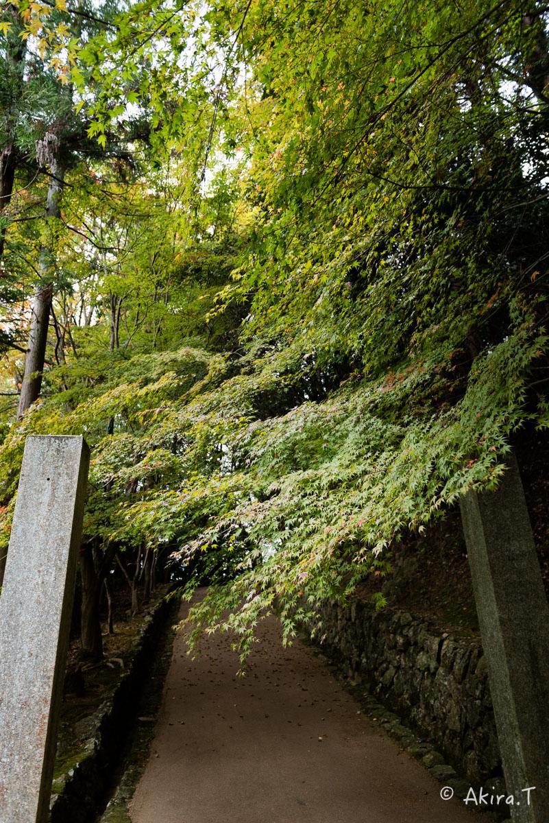 京都・亀岡の紅葉 2015 〜法常寺〜_f0152550_22513591.jpg