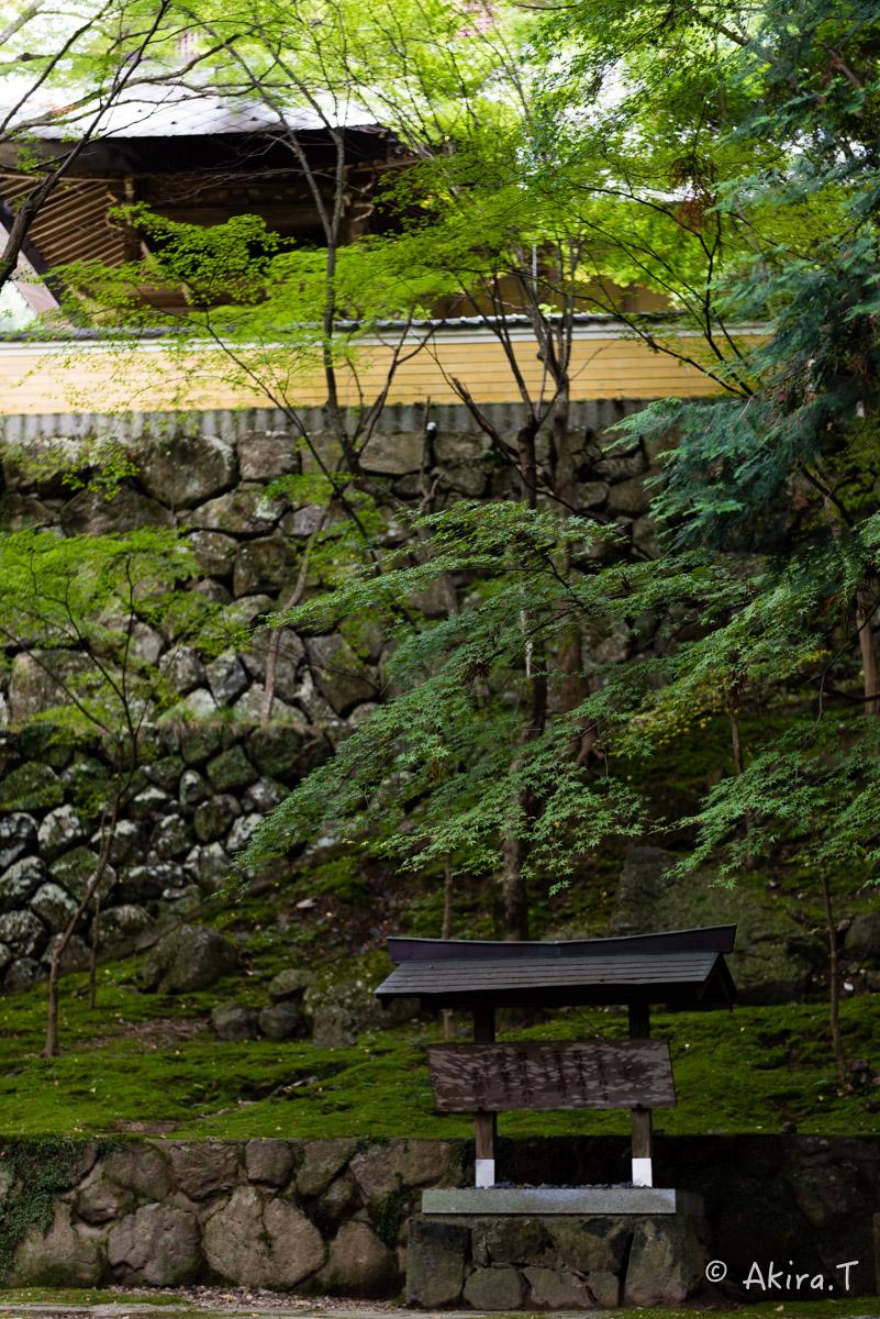 京都・亀岡の紅葉 2015 〜法常寺〜_f0152550_22514754.jpg