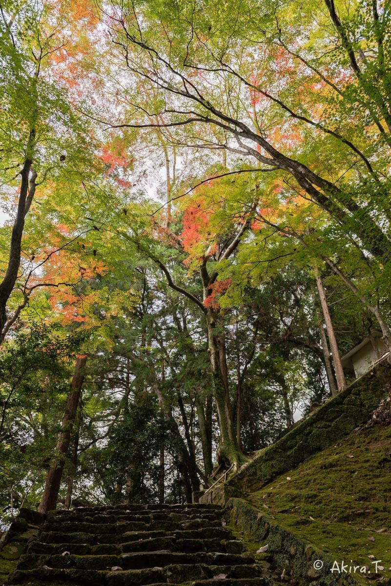 京都・亀岡の紅葉 2015 〜法常寺〜_f0152550_225201.jpg