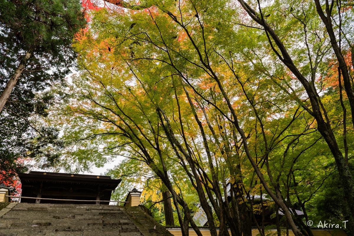 京都・亀岡の紅葉 2015 〜法常寺〜_f0152550_22521432.jpg