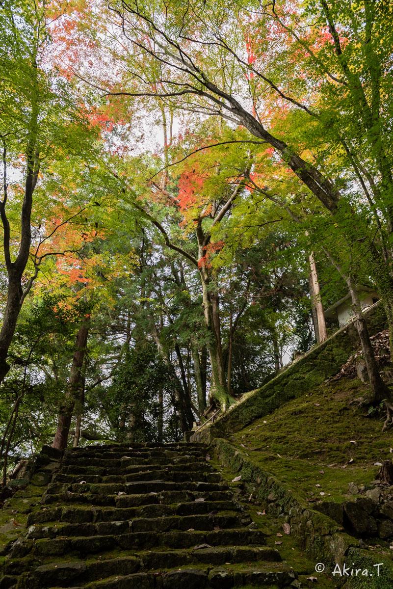 京都・亀岡の紅葉 2015 〜法常寺〜_f0152550_22524450.jpg