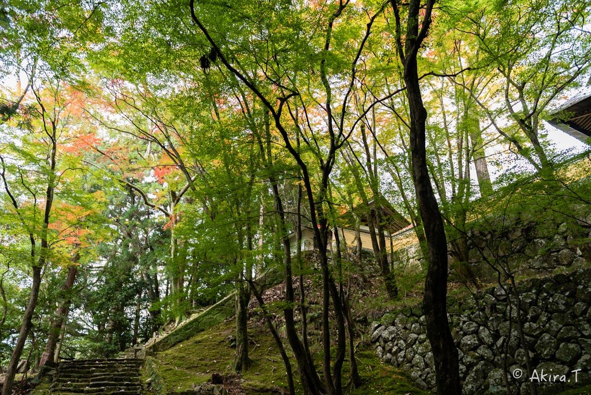 京都・亀岡の紅葉 2015 〜法常寺〜_f0152550_2253089.jpg