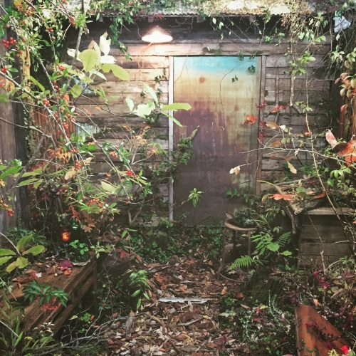 「庭マルシェⅢ」2日目終了しました。_e0060555_11442691.jpg