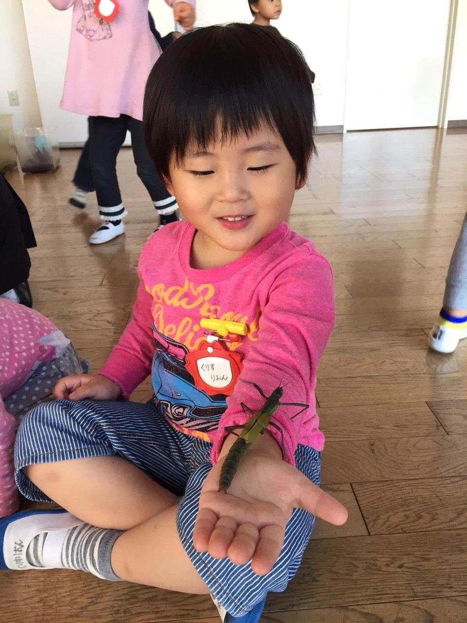 虫と遊ぼう‼︎_f0324461_23294006.jpeg
