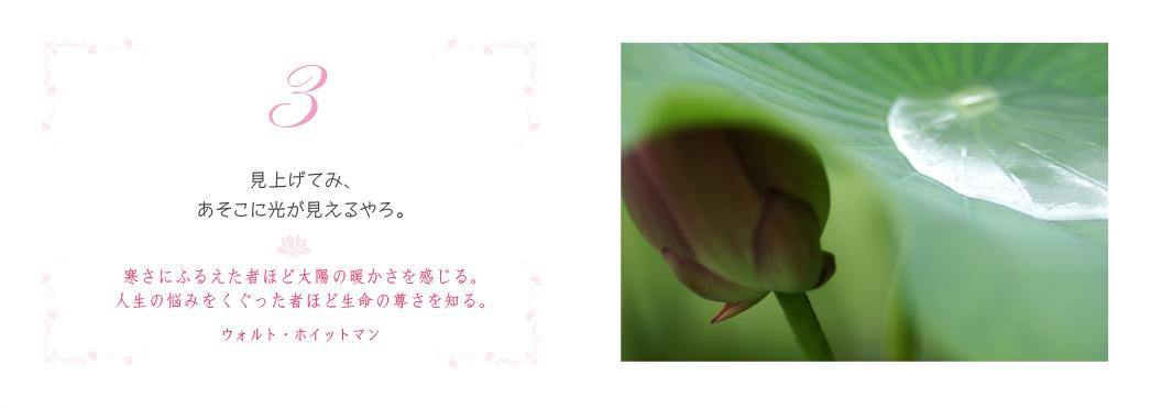 f0355165_10365693.jpg