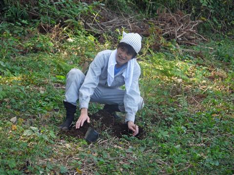 モミジなど植樹本数は138本に11・12六国見山臨時手入れ②_c0014967_5555829.jpg