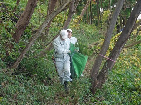 モミジなど植樹本数は138本に11・12六国見山臨時手入れ②_c0014967_5562013.jpg