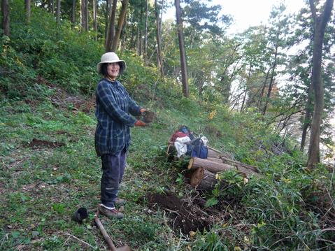 モミジなど植樹本数は138本に11・12六国見山臨時手入れ②_c0014967_557230.jpg