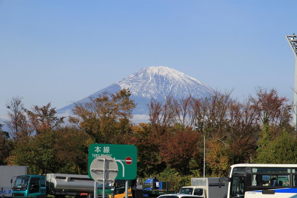 富士山が綺麗でした。~タチバナ(橘)の実~_a0107574_17363081.jpg