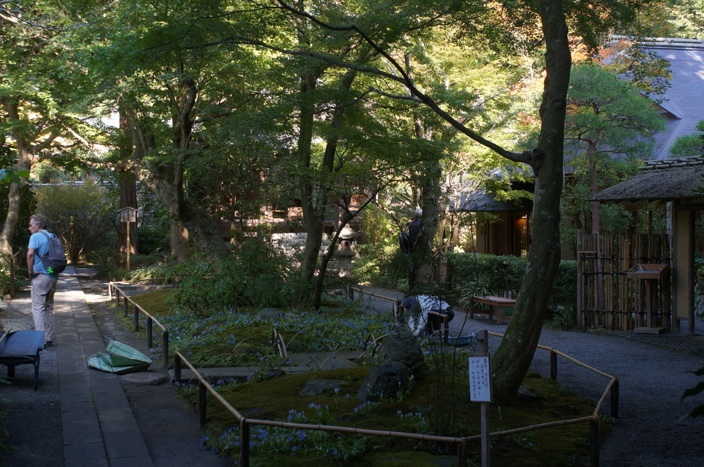 DSO in Japan日記。鎌倉から江ノ島の休日。_c0180686_10051612.jpg