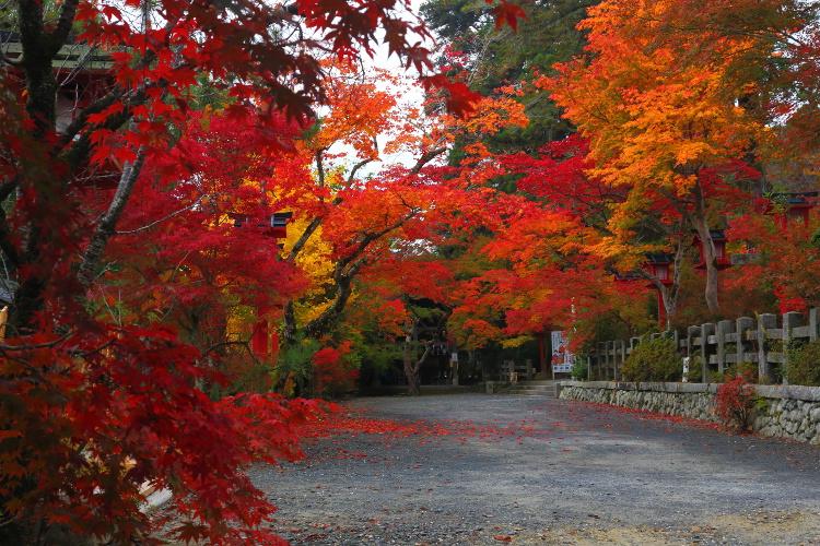 鍬山神社_e0051888_22183098.jpg
