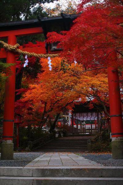 鍬山神社_e0051888_22184678.jpg