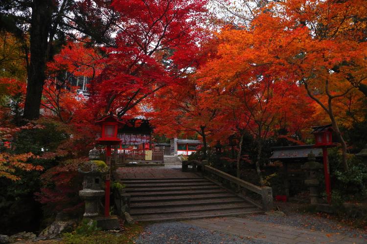 鍬山神社_e0051888_22185778.jpg