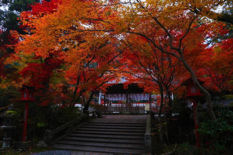 鍬山神社_e0051888_22191526.jpg