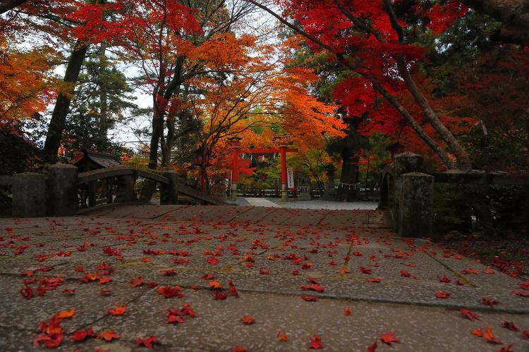 鍬山神社_e0051888_22193795.jpg