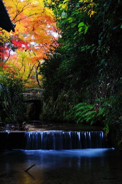 鍬山神社_e0051888_22194724.jpg