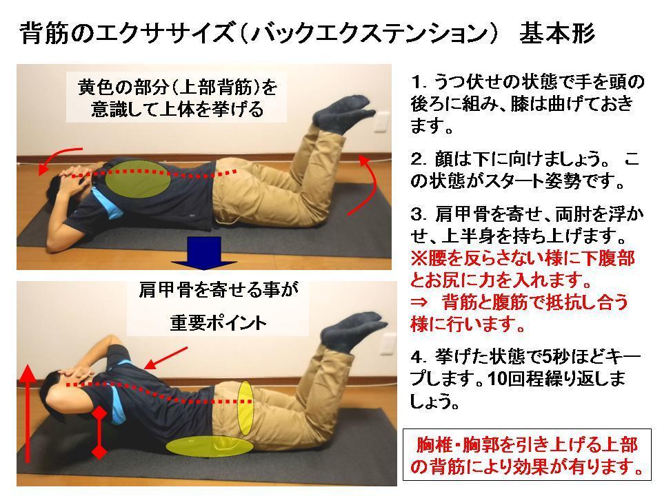 体幹トレーニングの効果的な方法 No4「背筋エクササイズ」_c0362789_08323633.jpg