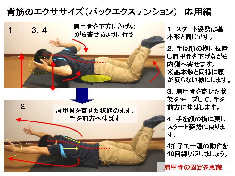 体幹トレーニングの効果的な方法 No5 背筋エクササイズ応用_c0362789_08461272.jpg