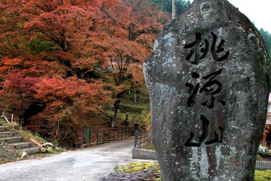 紅葉だより10 桃源山地蔵院_e0048413_16161645.jpg