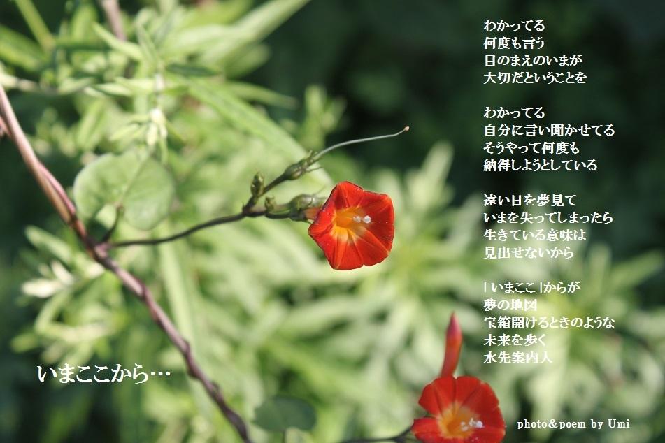 f0351844_12350551.jpg