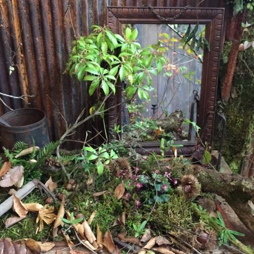 「庭マルシェⅢ」2日目終了しました。_e0060555_09084987.jpg