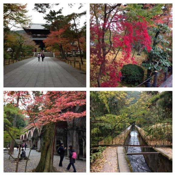 小旅行 紅葉の京都へ_d0152765_12060176.jpeg