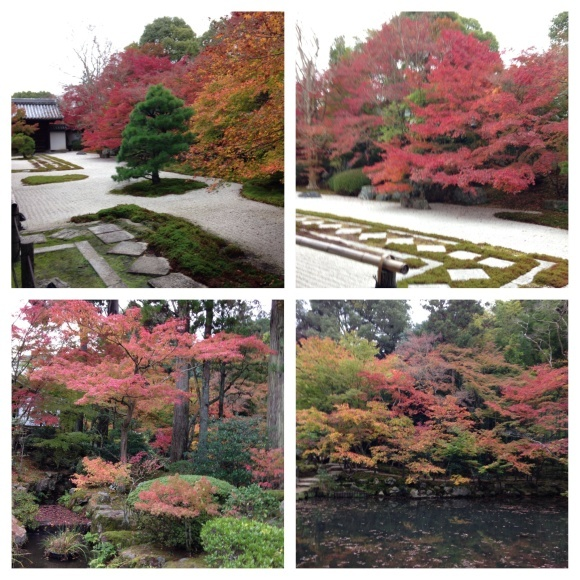 小旅行 紅葉の京都へ_d0152765_12082126.jpeg