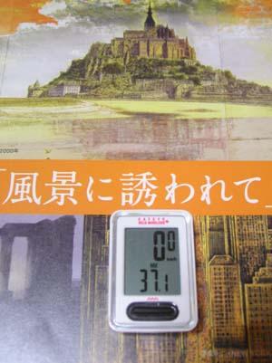 ぐるっとパスNo.9 郷さくら美術館「風景に・・・展」まで見たこと_f0211178_13111510.jpg