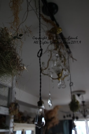 お花と植物と。インテリア・モノの重なり・・・_e0237680_10042900.jpg