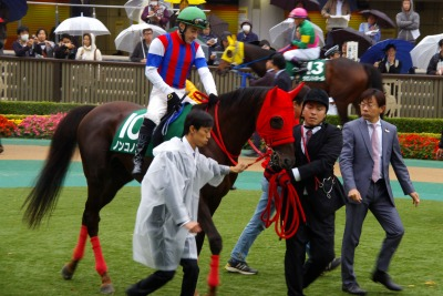 武蔵野Sはノンコノユメが大外一気に差し切り重賞3連勝!_b0015386_2228871.jpg