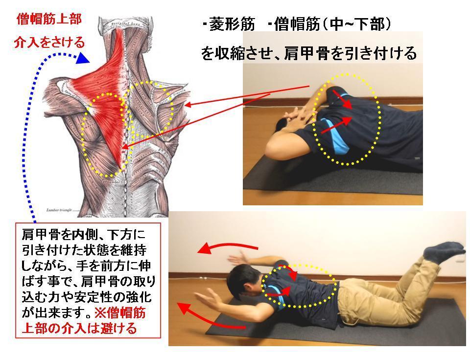 体幹トレーニングの効果的な方法 No5 背筋エクササイズ応用_c0362789_08184982.jpg