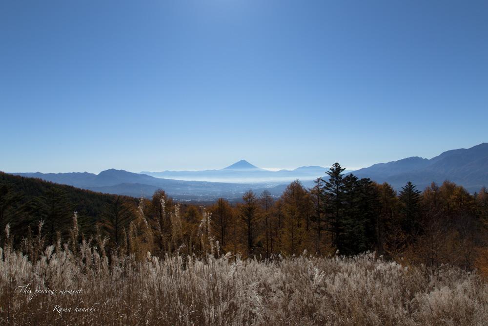 11/4 観音平から富士見高原へ_c0137403_1411890.jpg