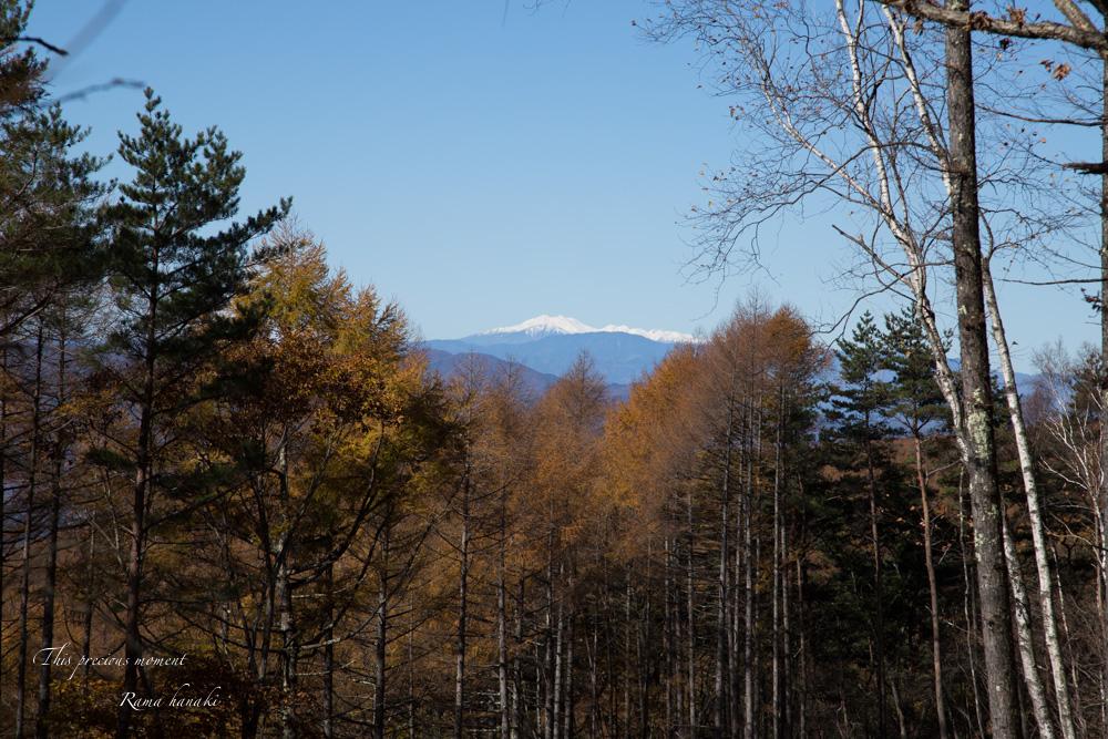 11/4 観音平から富士見高原へ_c0137403_14132060.jpg