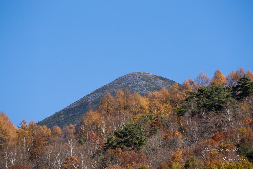 11/4 観音平から富士見高原へ_c0137403_1424463.jpg