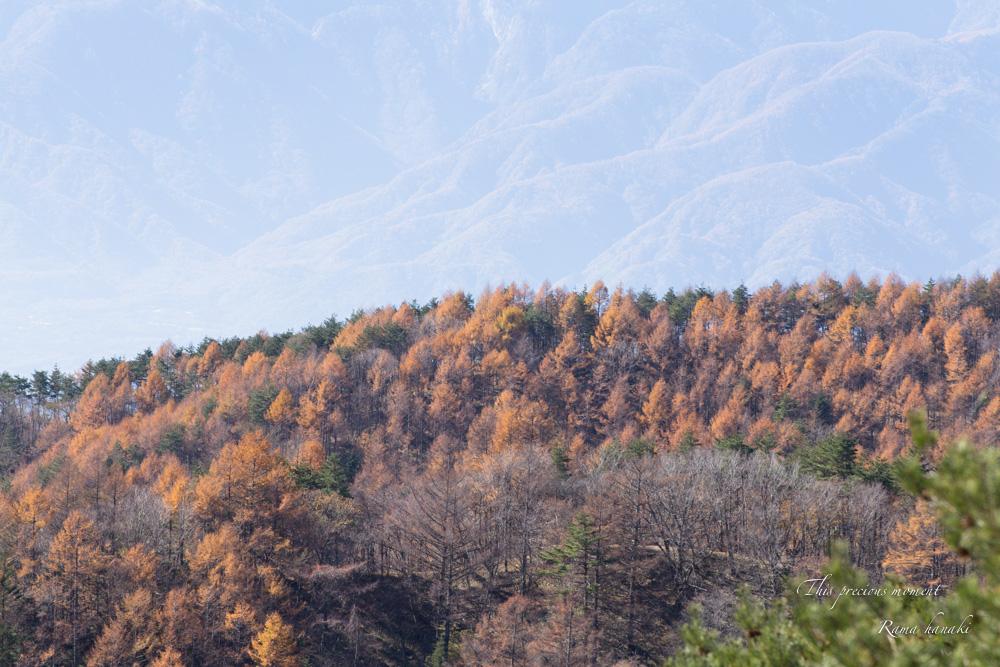 11/6 天女平から富士の絶景〜原村へ_c0137403_1619418.jpg