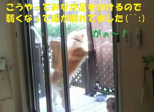 f0121712_811127.jpg