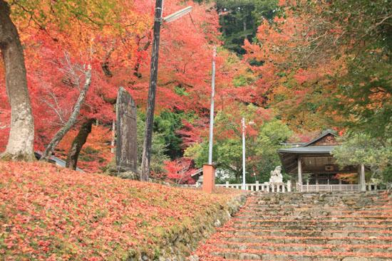 紅葉だより13 熊野神社と茅葺きの里_e0048413_18113322.jpg