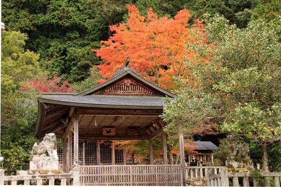 紅葉だより13 熊野神社と茅葺きの里_e0048413_18114640.jpg