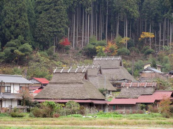 紅葉だより13 熊野神社と茅葺きの里_e0048413_18121224.jpg