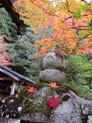 紅葉だより13 熊野神社と茅葺きの里_e0048413_1812191.jpg