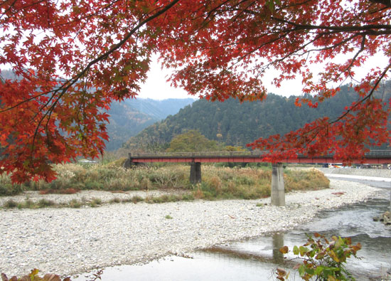 紅葉だより13 熊野神社と茅葺きの里_e0048413_18125337.jpg