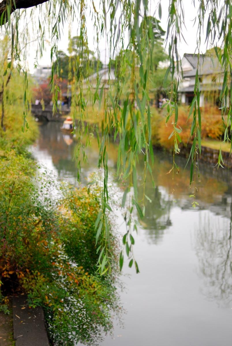 秋の美観地区♪_f0224648_15101426.jpg