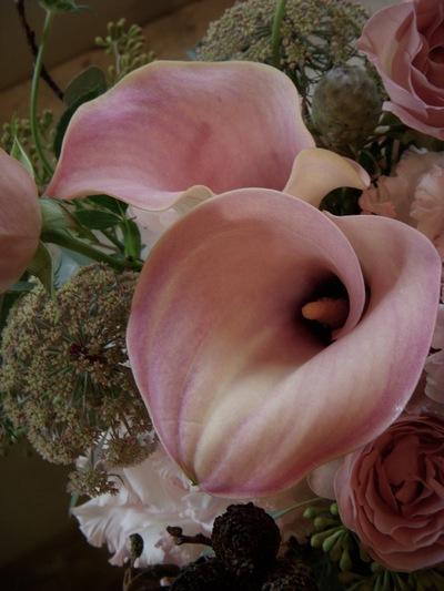ご注文のお花たち。。。_a0229658_8285639.jpg