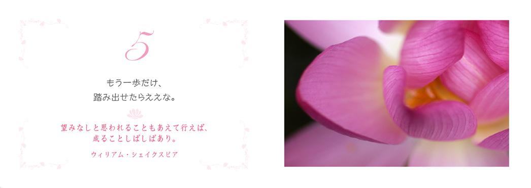 f0355165_16272659.jpg